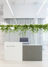 Image Linkopia Pinterest Of Course This Antiaging Startup Has The Most Zen Office