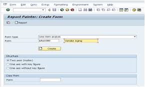 Aging Analysis Sap Fico Central Vendor Aging Analysis Through Sap Report Painter