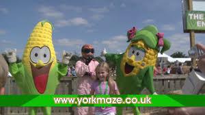 york maze. york maze tv advert 2017