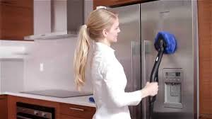 The Best Way To Clean Stainless Steel Appliances How To Clean Stainless Steel Appliances With A Steam Cleaner Youtube