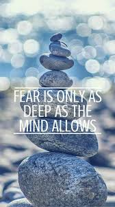 Facing Fear Quotes Best Facing Your Fears Quotes Mobile Friendly You Are Your Reality