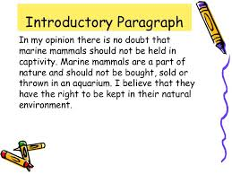 argumentative essay presentation slides argumentative essays format language 2