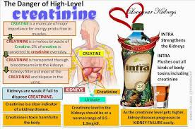 Veritable Kidney Problems Diet Chart Nephcure Kidney