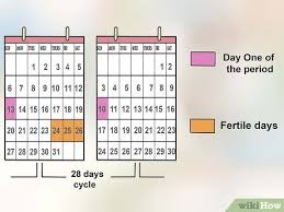 How To Determine Your Most Fertile Day To Conceive 7 Steps