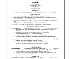 Magnificent Hybrid Resume Word Template Ideas Example Resume And
