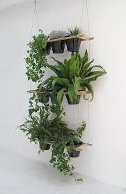 Hanging Indoor Planter fdd4bd71d5c1c1121166ebc738c4b6eb