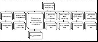 Отчет по практике в строительной компании Рис 1 Организационная структура управления ООО Компани Таргет