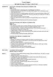 It Project Coordinator Resume Resume Sample