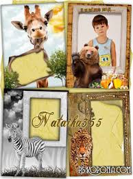 main free photo frames nature animals frames with animals beast hunt