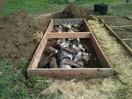 Cinderblock Versus Wood For Raised Beds Gardening