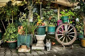 garden items. Best Whimsical Garden Decor Accents 10 Items That39ll Plant Happiness N