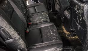 Image result for wet, mold flooded car