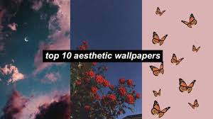 300+ Cute Vsco Wallpapers, Background ...