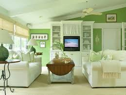 Light Blue Color Scheme Living Room Marvellous Design Green And Cream Living Room Ideas 15 And Dark