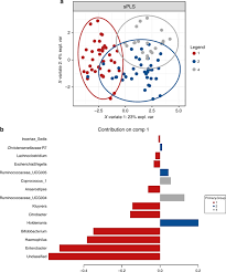 Perinatal factors affect the gut microbiota up to four years after ...