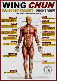 Pressure Points Body Self Defense Chart Body Pressure