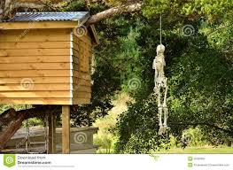 Hanging Tree House Hanging From A Tree Stock Image Image 30458951