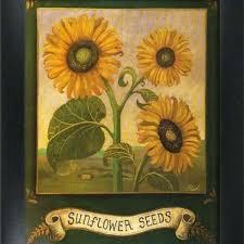 2 framed garden art prints home kitchen wall decor sunflowers sunflowers garden art and art
