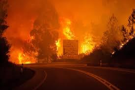 Resultado de imagem para fotos ou imagens do incêndio em Setúbal