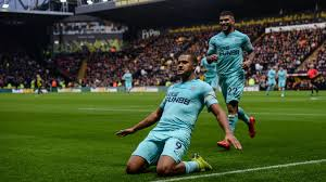 Image result for Watford 1 Newcastle 1