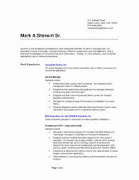 Service Delivery Manager Resume Sample Beautiful 100 Smt