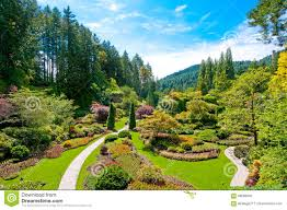 flower beds in the spring with lush colors victoria canada