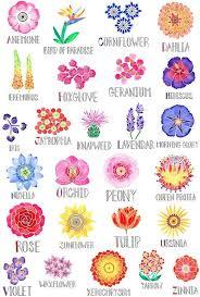 Official Birth Flower Chart Floral Alphabet Poster Flowers In 2019 Flower Art