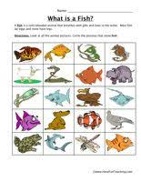 Critter Classification  Reptiles   Worksheet   Education moreover e classroom co za wp content uploads 2012 08 CAPS GradeR moreover Tracing Snake Picture Worksheets For Kindergarten and Preschool furthermore Fine Motor Worksheets For Kindergarten Dot Math Koogra Skills together with matching worksheets Reptil Animals   Homeschool   Pinterest further Mammals  Reptiles  Fish  OH MY   Reptiles  Fish and  hibians furthermore Alphabetical Order Worksheet   Reptiles   Have Fun Teaching also What is a reptile  Printable reptile book by TwistyNoodle also  as well Reptiles Primary Teaching Resources and Printables   SparkleBox moreover FREE Printable Reptiles and  hibians Pack   Free Homeschool Deals. on reptile worksheets for preschool writing