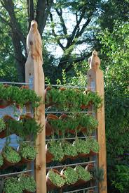 vertical garden, privacy fence - Idea for up at the cabin perfect for herbs  or lettuce
