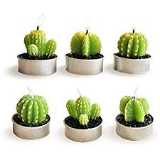 Small Picture Amazoncom LSHCX Cactus Candles for Home Decor 6 Pack Home