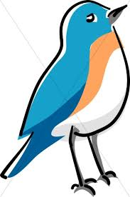 blue bird clipart. Interesting Clipart Blue Bird Standing In Clipart