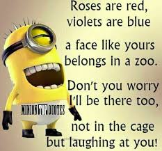 Image result for funny happy birthday messages