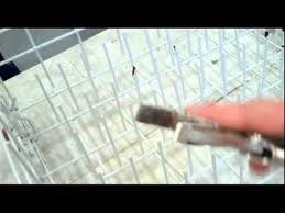 Plastic Coating For Dishwasher Rack Fixing A Dishwasher Rack YouTube 68