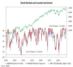 Investor Sentiment Index Chart S P 500 Market Outlook The Post Election Rally Stalls