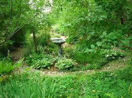 Small Picture Garden Design Garden Design with Woodland Garden Eclectic