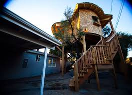 Worldu0027s Most Ultimate Treehouses  Treehouse Masters  Animal PlanetTreehouse Masters Free Episodes