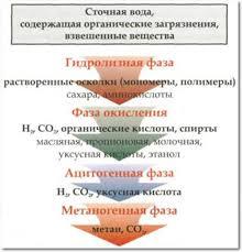 Анаэробная очистка воды Реферат страница  Биологическое разложение сложных органических соединений происходит в т