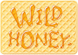 collage fonts free photoshop free font wild honey photo collage pinterest wild