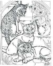 Islamic Art Coloring Pages Art Pages To Color Pretentious