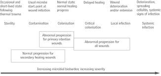 Wound Bed Preparation And The Time Principles