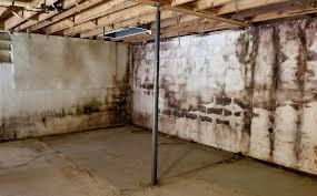 basement mold remediation project a 1