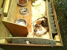outside cat house awesome how to care for outdoor cats and barn set ups supplies of outdoor cat house