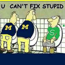 Image result for michigan vs michigan state fans