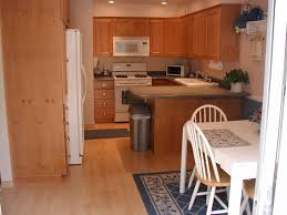 Kitchen Flooring Ideas Kitchen Painted Hardwood Floors Interior - Wood floor in kitchen