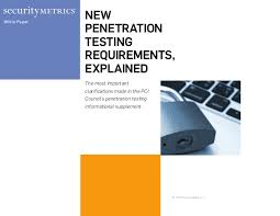 Information supplement requirement 11.3 penetration testing
