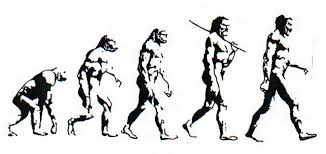 Evolution Of Man Drawing At Paintingvalley Com Explore