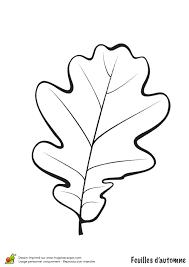 Coloriage Feuilles D Automne Sur Hugolescargot Com