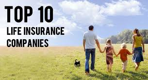 how to get a fabulous tips about life insurance companies in usa