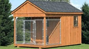outdoor dog kennels for stylish large shed row style multi pet pro in 5