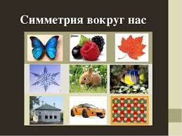 Проект по теме Симметрия вокруг нас  Симметрия вокруг нас